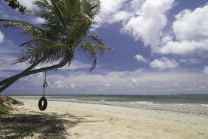 balanço de pneu de praia tropical