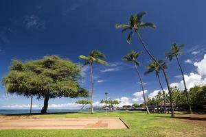 View of Lahaina harbor park, Maui, Hawaii