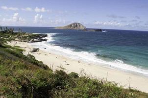 makapu'u beach vista op een zonnige dag.