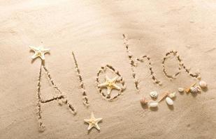 aloha praia escrevendo com conchas do mar