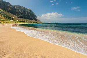 playa hawaiana con fondo de arena y montaña