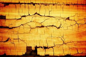 Wooden cracked