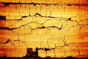 houten gebarsten
