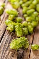 Fresh green hops on wooden desk