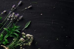 French herbs on the black desk top view photo