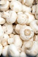 White paris mushrooms