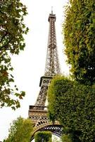 Eiffel tower and its surroundings photo