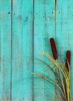 Cattails border antique blue wooden fence