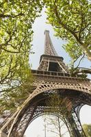 Eiffel tower in Paris photo