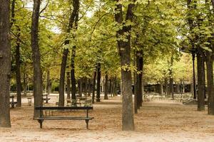 Park bench in Paris