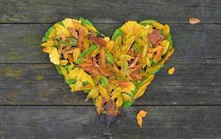 En forma de corazón formado por hojas de otoño sobre un fondo de madera.