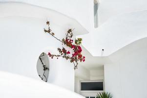 arquitectura blanca en la isla de santorini, grecia. foto