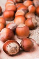 Hazelnuts close-up photo
