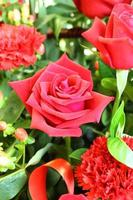 Rose close up photo
