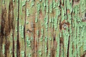 Old wooden door with green cracked paint. photo