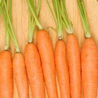 Close up carrots
