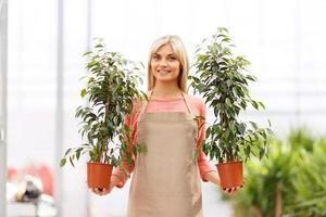 Professional florist working in  greenhouse photo