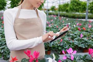 floristería positiva trabajando en el invernadero