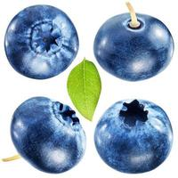Four blueberries with leaf. File contains clipping paths.