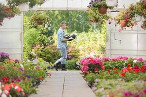gardener carrying crate with flower pots while walking outside greenhouse