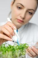 Young scientist or tech picks up cress-salad sprouts for quality