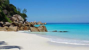 untouched beach photo