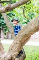 smiling boy is climbing on the tree