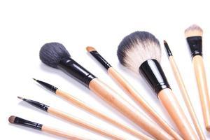 professional make-up brushes isolated on white