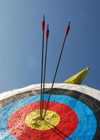 Three arrows sticking out of a yellow bullseye
