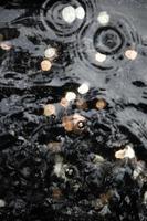 desejando bem moedas e ondulações