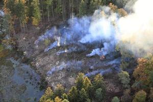 Aerial photo of a burned forest. Autumn