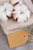 cotton spa