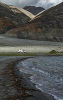 White car at Pangong lake surrounded by mountain range.