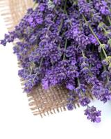 lavender on burlap