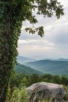 Shenandoah Overlook