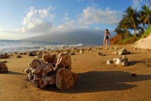 coral y niña en el paraíso