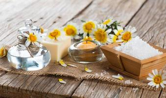 spa theme object of chamomile