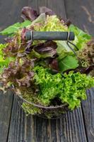 Salad leaves in a rusty vintage basket