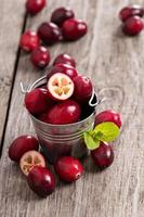 Cranberries in a bucket photo