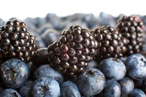 Freshly picked blueberries and blackberries close-up