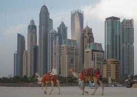 Dubai Marina photo