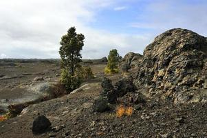 vulkanisch park, groot eiland, Hawaï