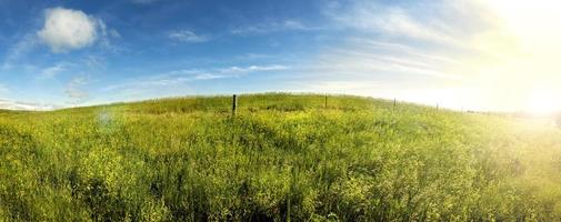 días de verano, salida del sol en tierra de hierba del sur de dakota.