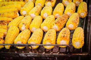 close-up of grilled, yellow corncobs.