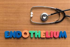 endothelium photo