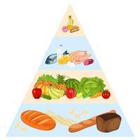 pirâmide alimentar em fundo branco vetor