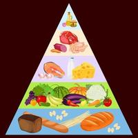 Food pyramid on dark background vector
