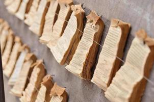 cartomante de papel