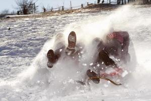 Family at high speed on a sled