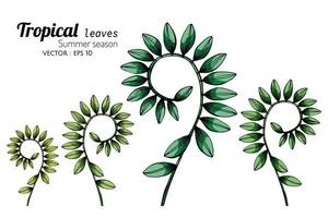 Set of Coiled Tropical Leaves Hand Drawn Set